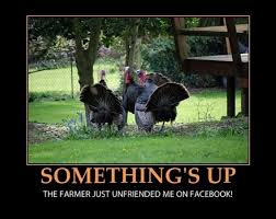 Hilarious Dirty Memes - happy thanksgiving memes funny dirty hilarious free images