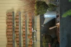 plantswise your expert gardening advisor page 2