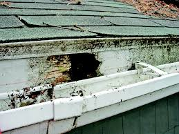 4 fascia board repair tips for your roof angie u0027s list