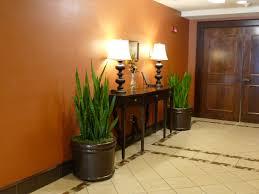 interiorscapes inc ground breaking plant design in alabama