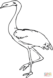 heron coloring page free printable coloring pages