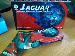 kapsul obat kuat jaguar duta herbal indonesia toko dan apotek
