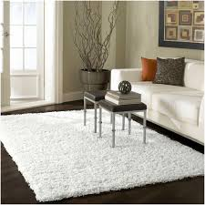 Living Room Interesting White Shag Rug For Modern Family Room - Family room rug