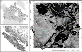 forests free full text enriching als derived area based