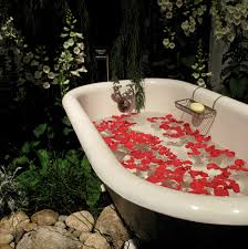 outdoor bathtub pictures and profiles of great container plants and flowers