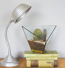Homes And Interiors Scotland Terrarium Firma Fashionable Flora With Minimum Fuss Homes