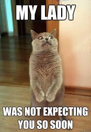 Soon Cat Meme - my lady was not expecting cat meme cat planet cat planet