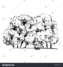 sketch trees ink brush shrubs stock vector 490509124 shutterstock