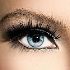 3d extensions reusable 3d magnetic eyelash extensions 1 set leaves