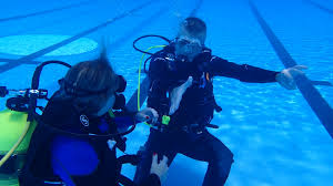 100 open water course padi instructor manual 2013 why us