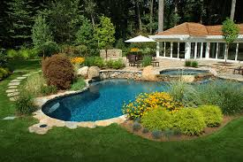 Swimming Pool Backyard by Swimming Pool Installation And Renovation