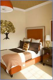 marvelous small master bedroom paint color ideas photography with
