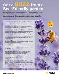 bee friendly gardens flow hive flow