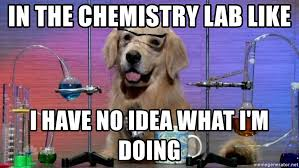 Chemistry Dog Meme - in the chemistry lab like i have no idea what i m doing