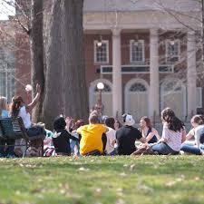 undergraduate admissions iup