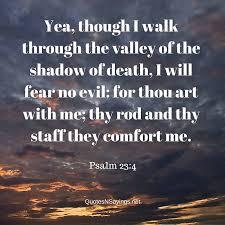 comforting verses for death scriptures on comfort comforting bible verses