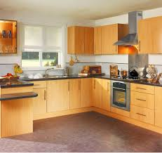 L Shaped Kitchen Design L Shaped Kitchen Layout With Kitchen Cabinet And Washing Stand