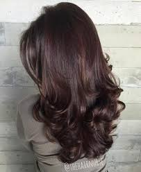 light mahogany brown hair color with what hairstyle 9 best hair that s on trend in style images on pinterest