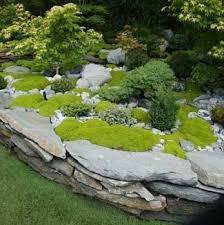 creative diy gardening idea 18 rock u0026 moss landscape