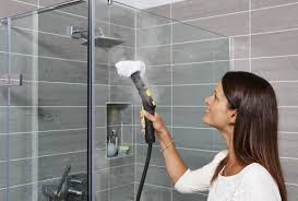 steam bathroom cleaner home design
