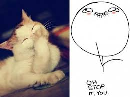 Oh You Stop It Meme - oh stop it you meme cat
