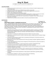 Examples Of A Resume Profile by Resume Attributes Good Cv Attributes Curriculum Vitae Amazing