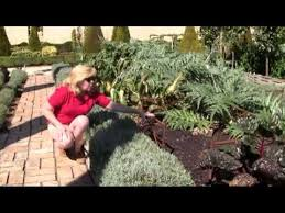 How Do You Spell Backyard 10 10 20 Senga U0027s Vlog How Do You Design A Potager Garden Go To