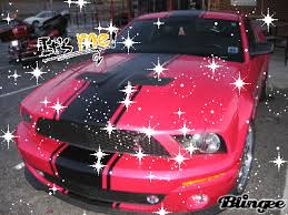 a pink mustang pink mustang picture 131537442 blingee com