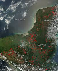 Wildfire Book Summary by Fires In The Yucatan Peninsula April 2015 Nasa