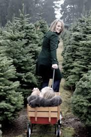99 best christmas tree farm images on pinterest christmas tree