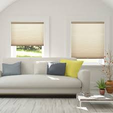 Lowes Living Room Furniture Decoration Honeycomb Shades Lowes In Beige With Modern Sectional