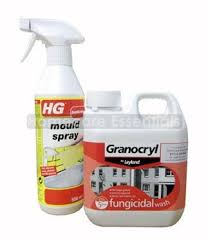 Anti Mould Spray For Painted Walls - anti mould kit hg mould spray 500ml and fungicidal wash 1 litre