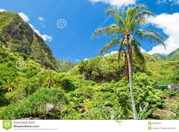 Iao Valley State Park Map by