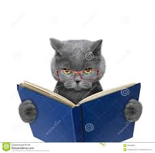 evil cat in glasses is reading a book stock photo image 69256846