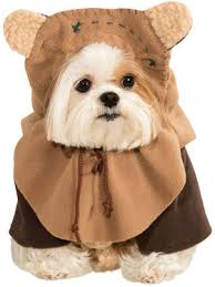 Halloween Costumes Puppies Dog Halloween Costumes Pet Canine Wholesale Prices