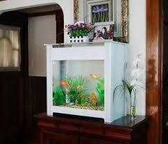 designer aquarium the world s easiest 30 gallon designer aquarium prefundia
