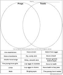 frogs and toads venn diagram printout enchanted learning software