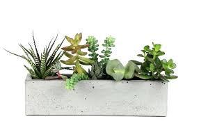 window planters indoor window planters indoor ecovote me