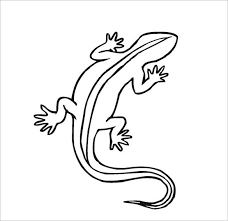 desert lizard coloring page 22 lizard templates crafts colouring pages free premium