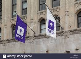 University Flags Purple And White Nyu Flags Hang From A New York University
