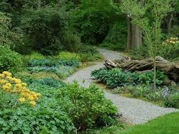Botanical Gardens Seattle 10 Seattle Gardens You Must Explore This Summer Dunn Gardens