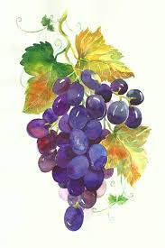 grapes home decor crafts new the cat in the grapes wall home