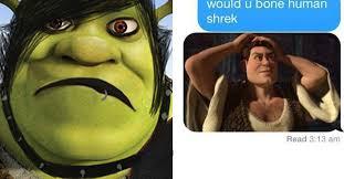 Shrek Memes - literally just 25 hilarious memes about shrek
