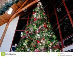 large indoor decorated christmas tree stock images image 21528494