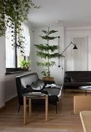 plante verte dans une chambre plantes depolluantes pour chambre coucher vertes plante verte une