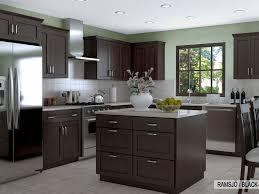 best ikea kitchen designs kitchen cabinet amazing ikea kitchen cabinets kitchen ikea