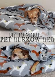 Burrowing Dog Bed Diy 10 Minute Pet Burrow Bed Shaina Glenn
