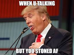 Smoke Weed Everyday Meme - image tagged in donald trump smoke weed everyday 420 blaze it mlg