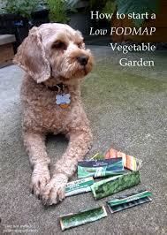 a fodmap friendly veggie garden for summer not from a packet mix