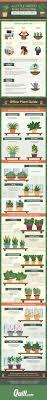 the 25 best plants for office ideas on pinterest plants in